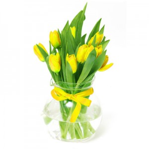 9 Yellow Tulips
